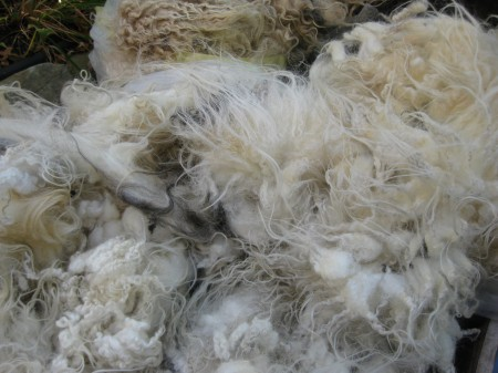 fleece