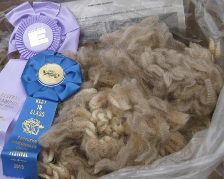 01 fleece